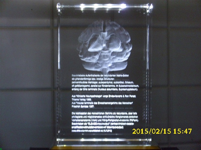in GLASBLOCK gelasert 3D Ansicht menschl. Gehirn und TEXT